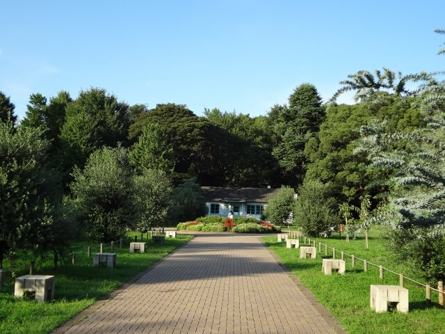 代々木公園 オリンピック記念の宿舎